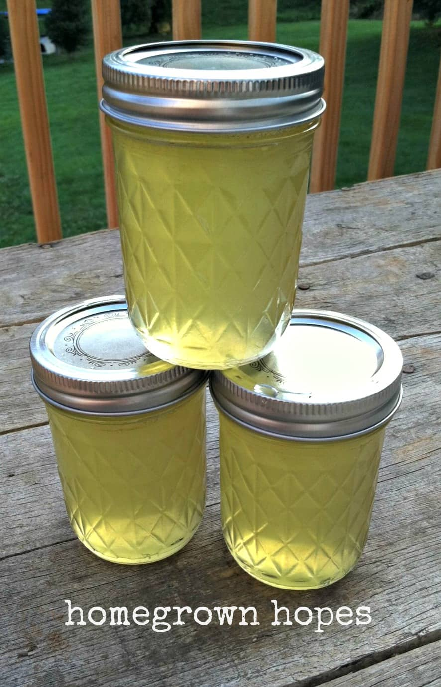 Cucumber Jelly