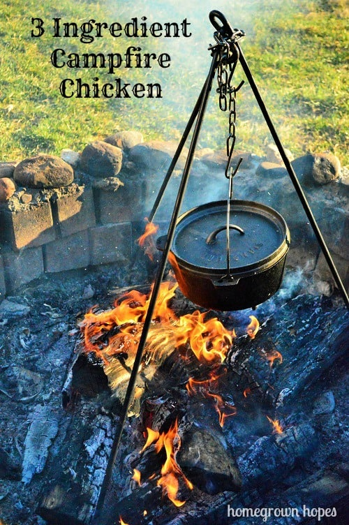 campfire chicken text