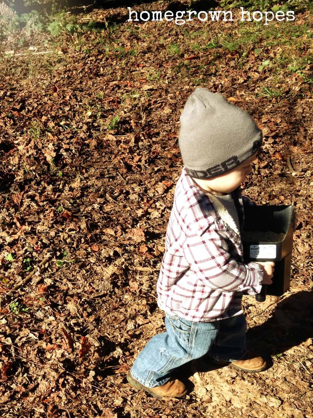 feeding chickens-children farm activities