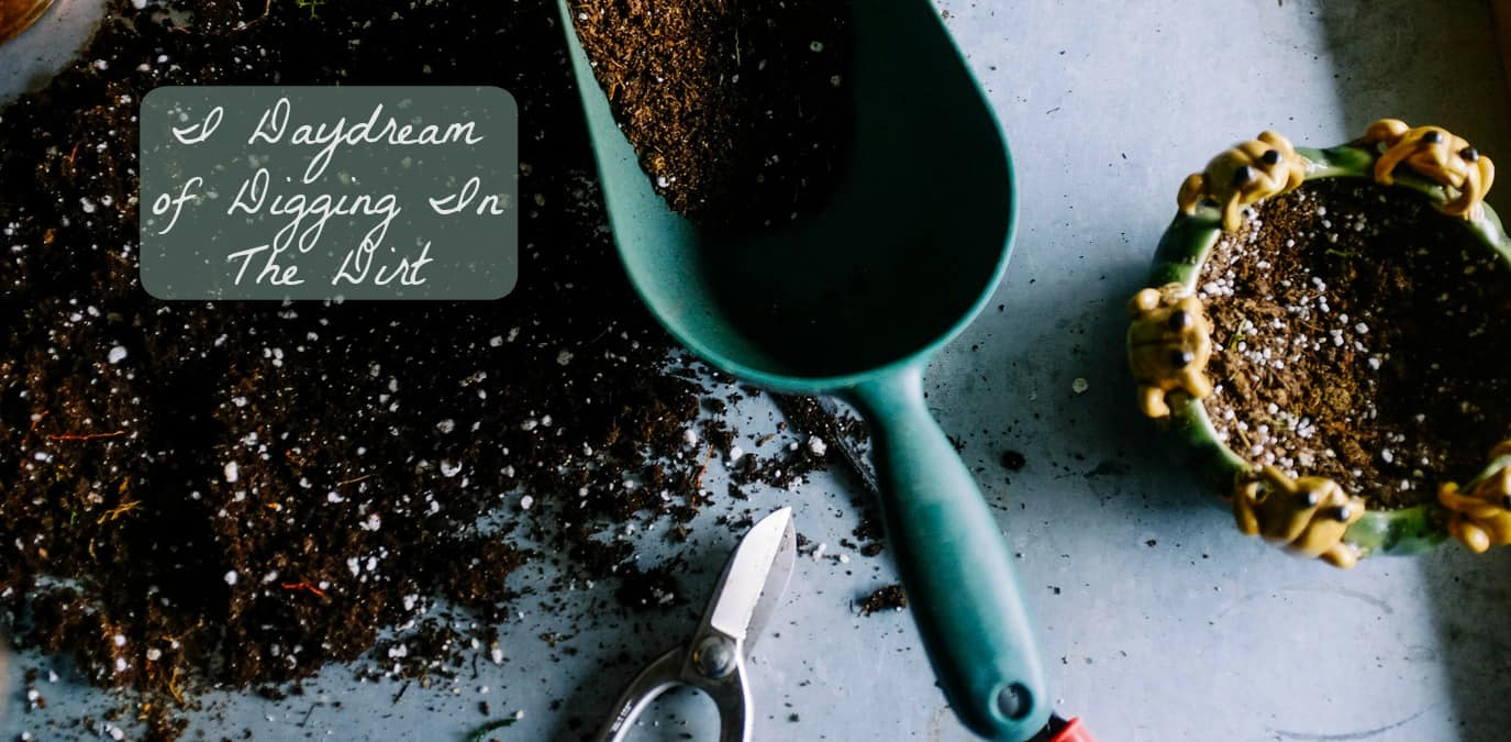Soil edit