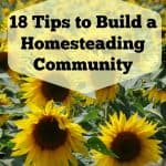 18 Ways to Build a Homesteading Community: Homestead Blog Hop #23