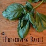 Preserving Basil